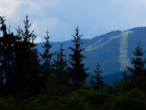 УПИ до връх Мечи Чал, Чепеларе